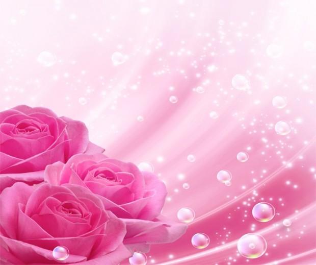 Photos, Beautiful Roses