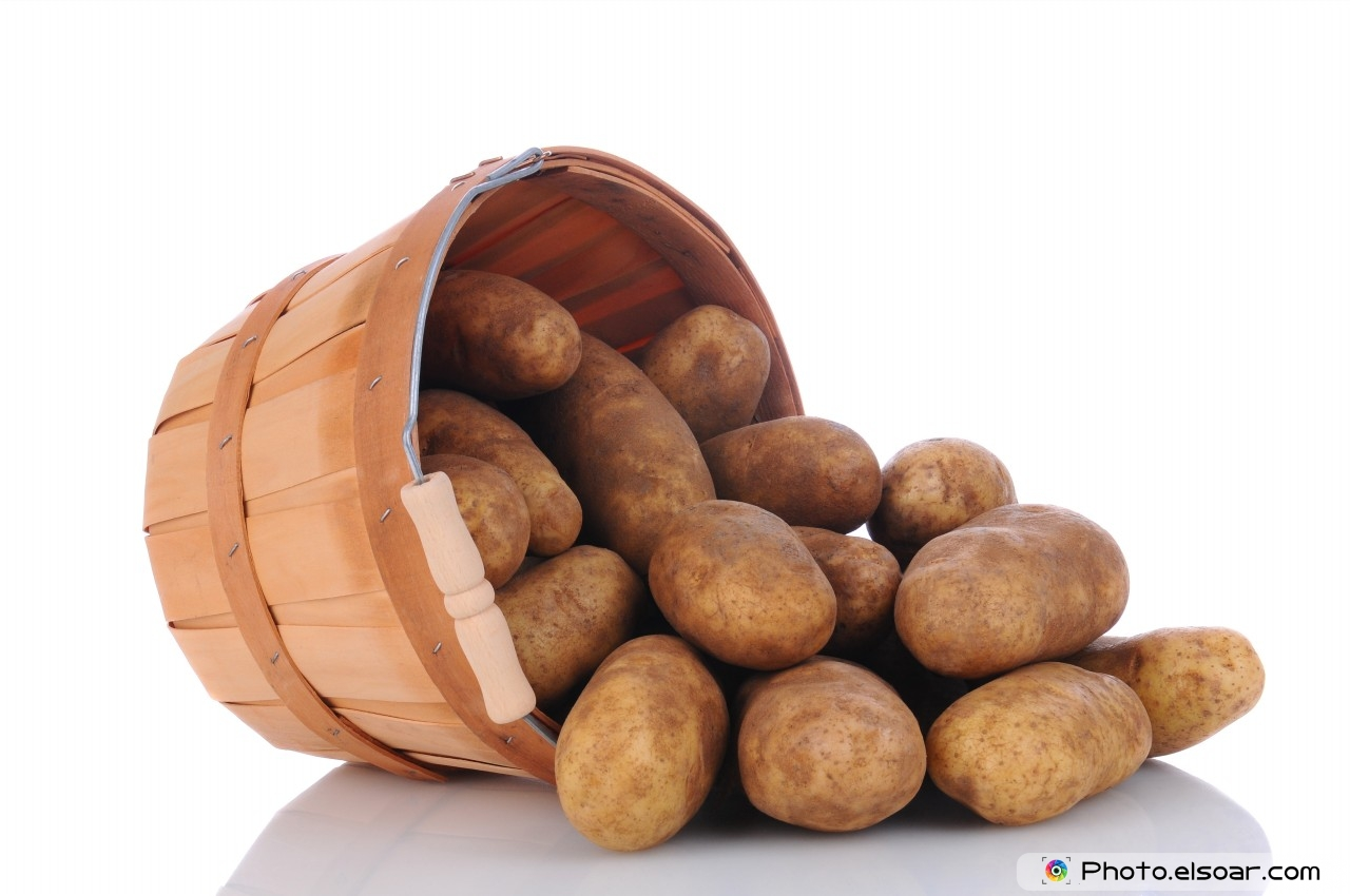 Russet Potatoes Spill From Basket