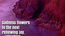 Sadness flowers to the next renewing joy