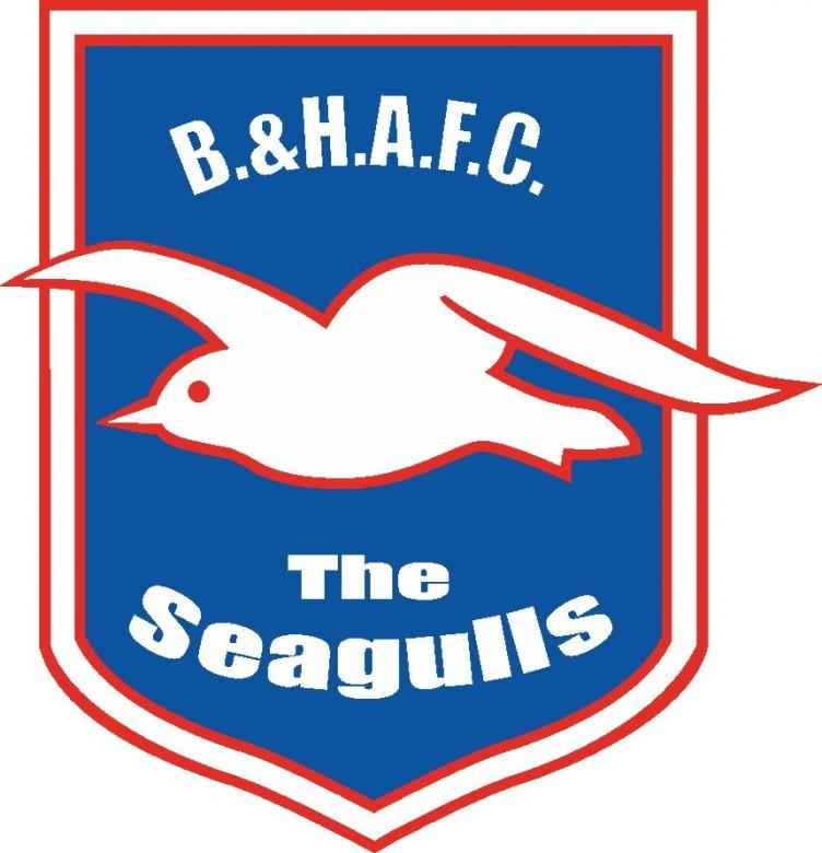 Seagulls - Brighton and Hove Albion FC Logo