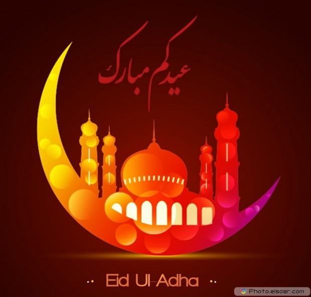 Selamat Idul Adha Dalam Bahasa Inggris, Arab