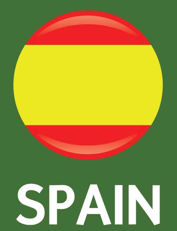 Spain Flag FIFA World Cup