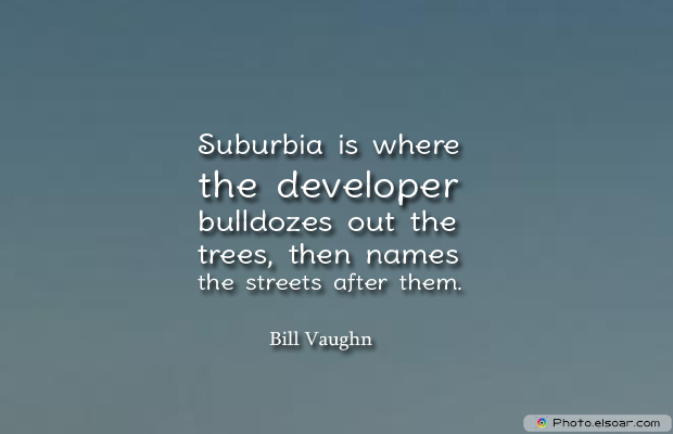 Suburbia is where the developer