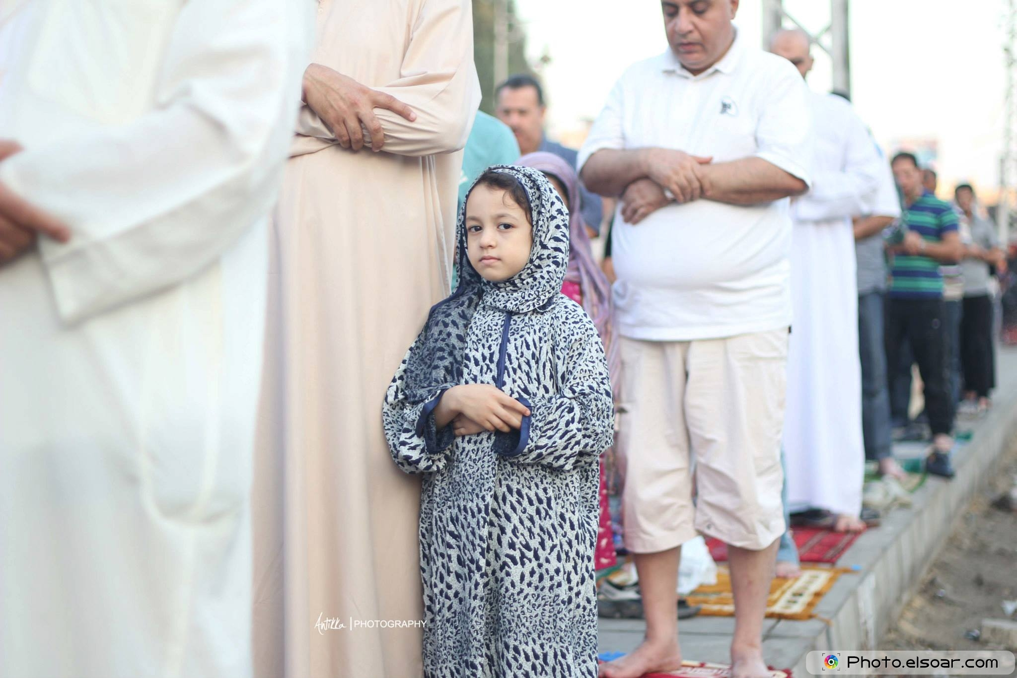The Eid Prayer At Egypt