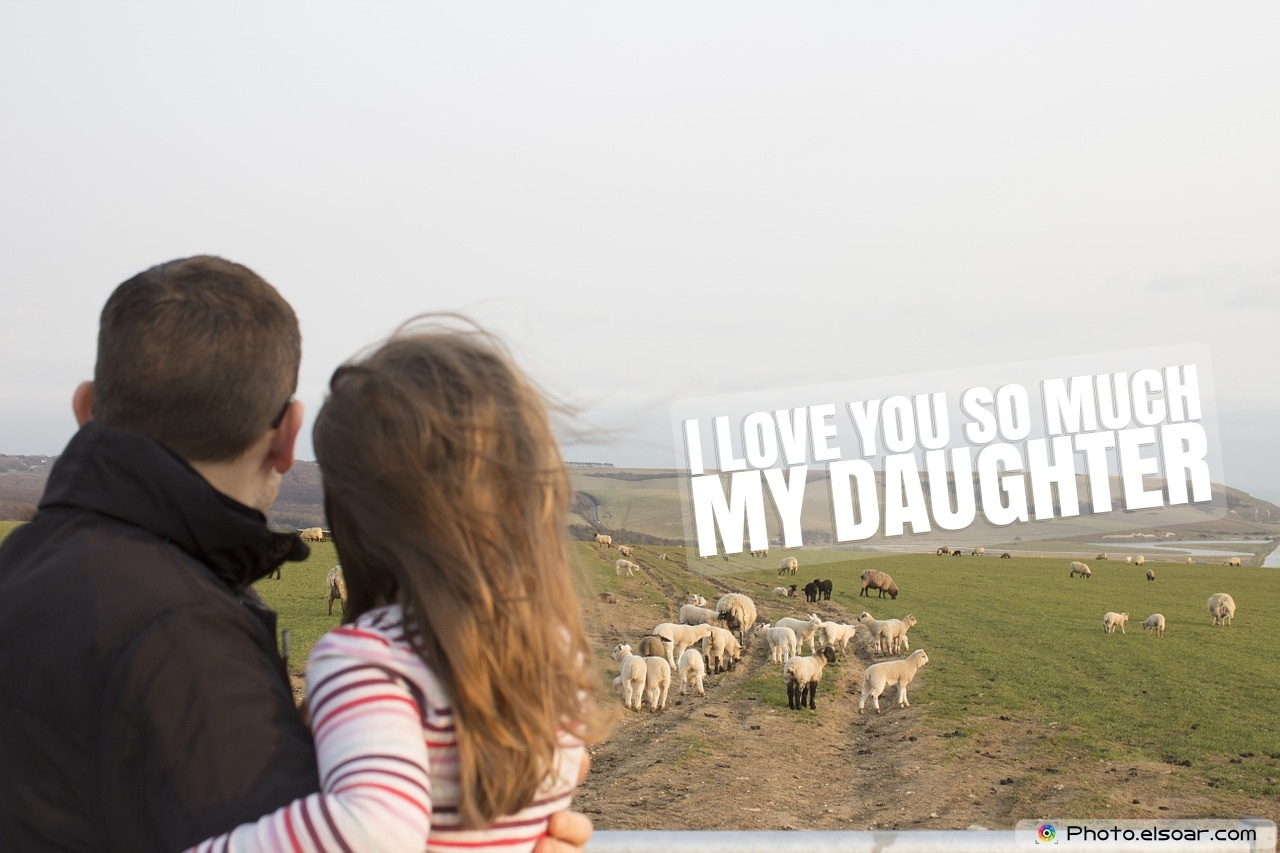 The Father And His Daughter, Lambs