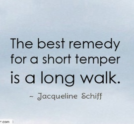The best remedy for a short temper