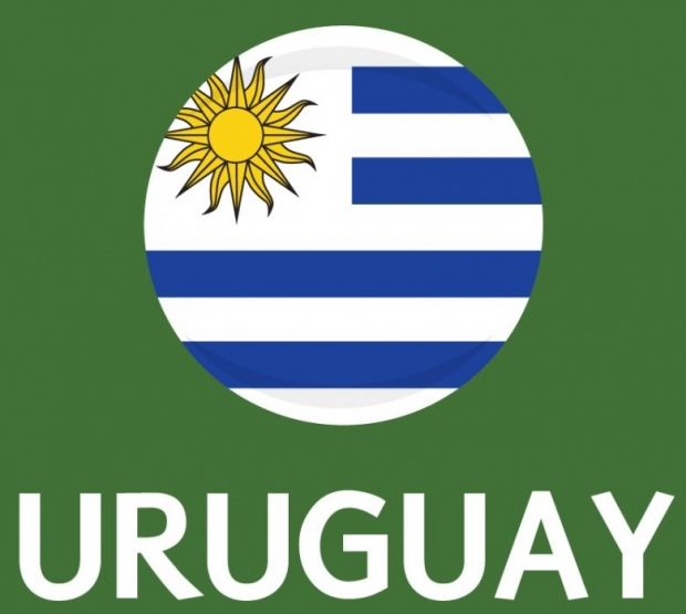 Uruguay Flag FIFA World Cup