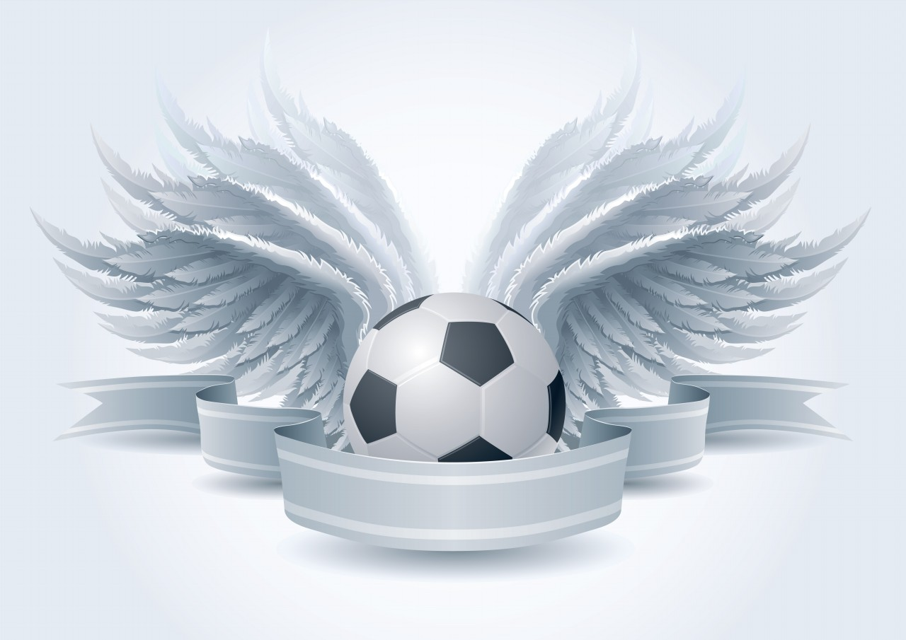 Wings and soccer ball