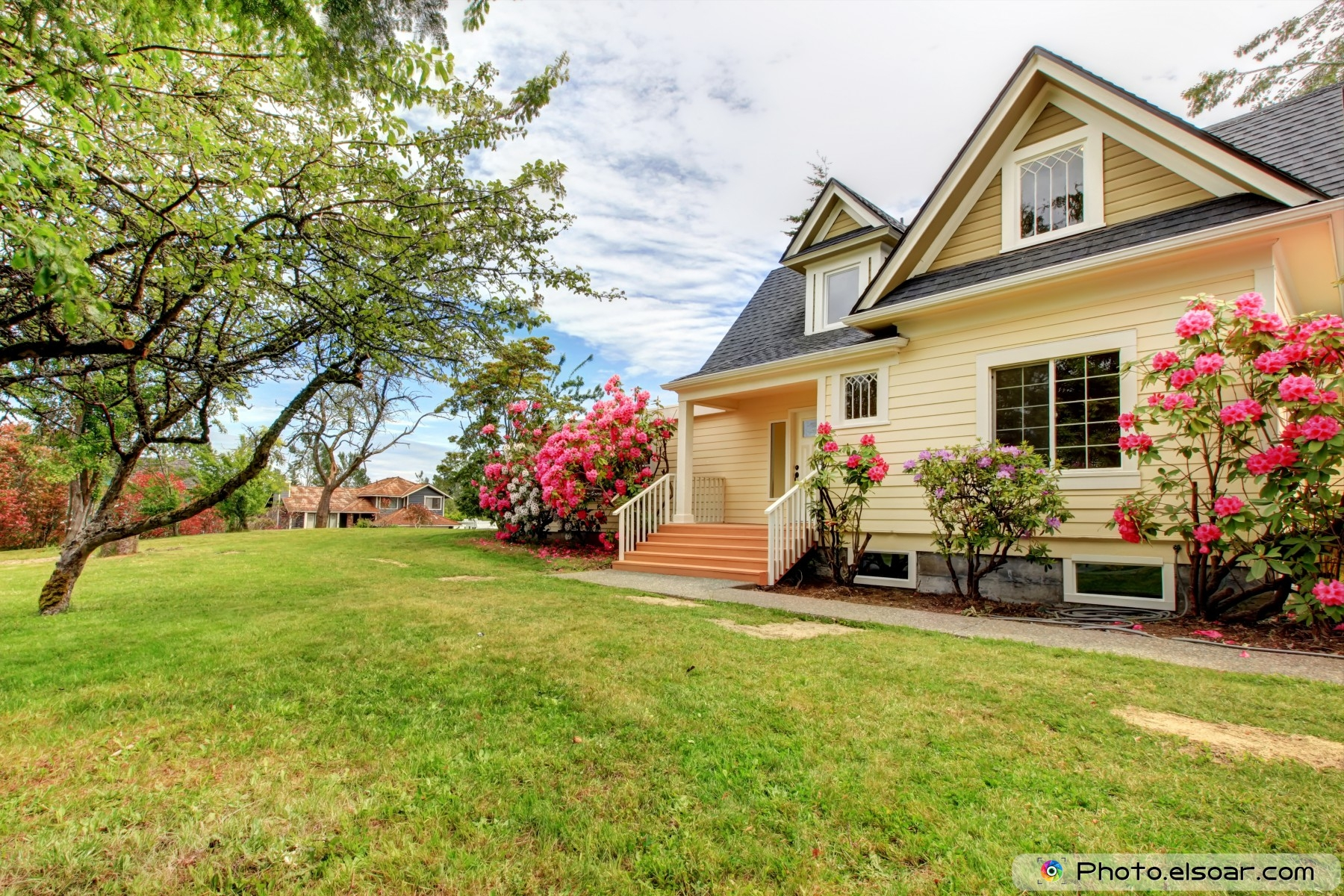 awesome 10 house exterior with spring blooming rhododendron • elsoar