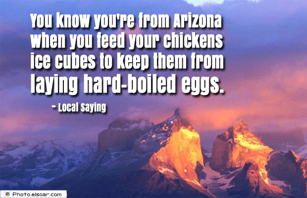 Image result for you know you're from arizona when