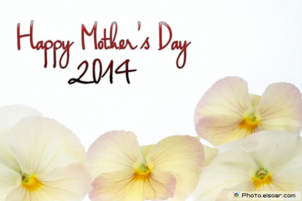 Happy Mother's Day 2014 with petals