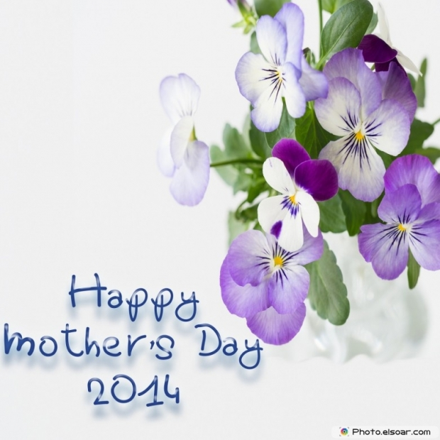 Happy Mother's Day 2014 on grey background